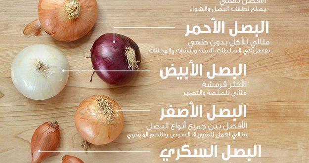 البصل انواعة وطرق استخدامه