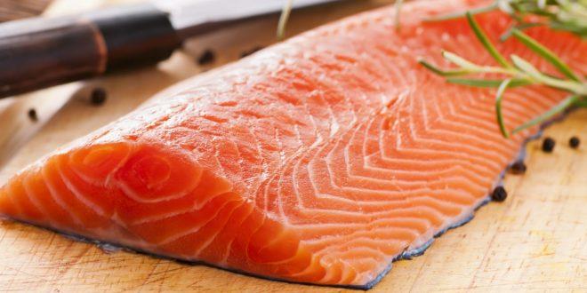 اهمية سمك السلمون