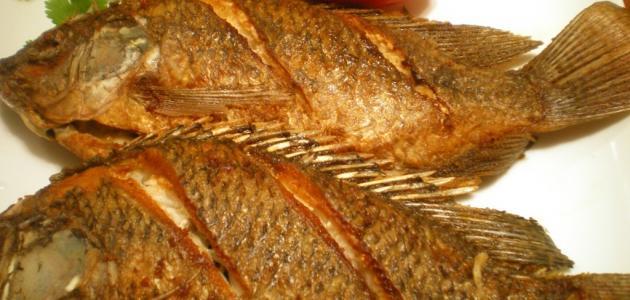 اهمية السمك المقلي